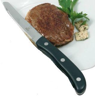 Steakmesser 21cm mit Kunsstoffgriff